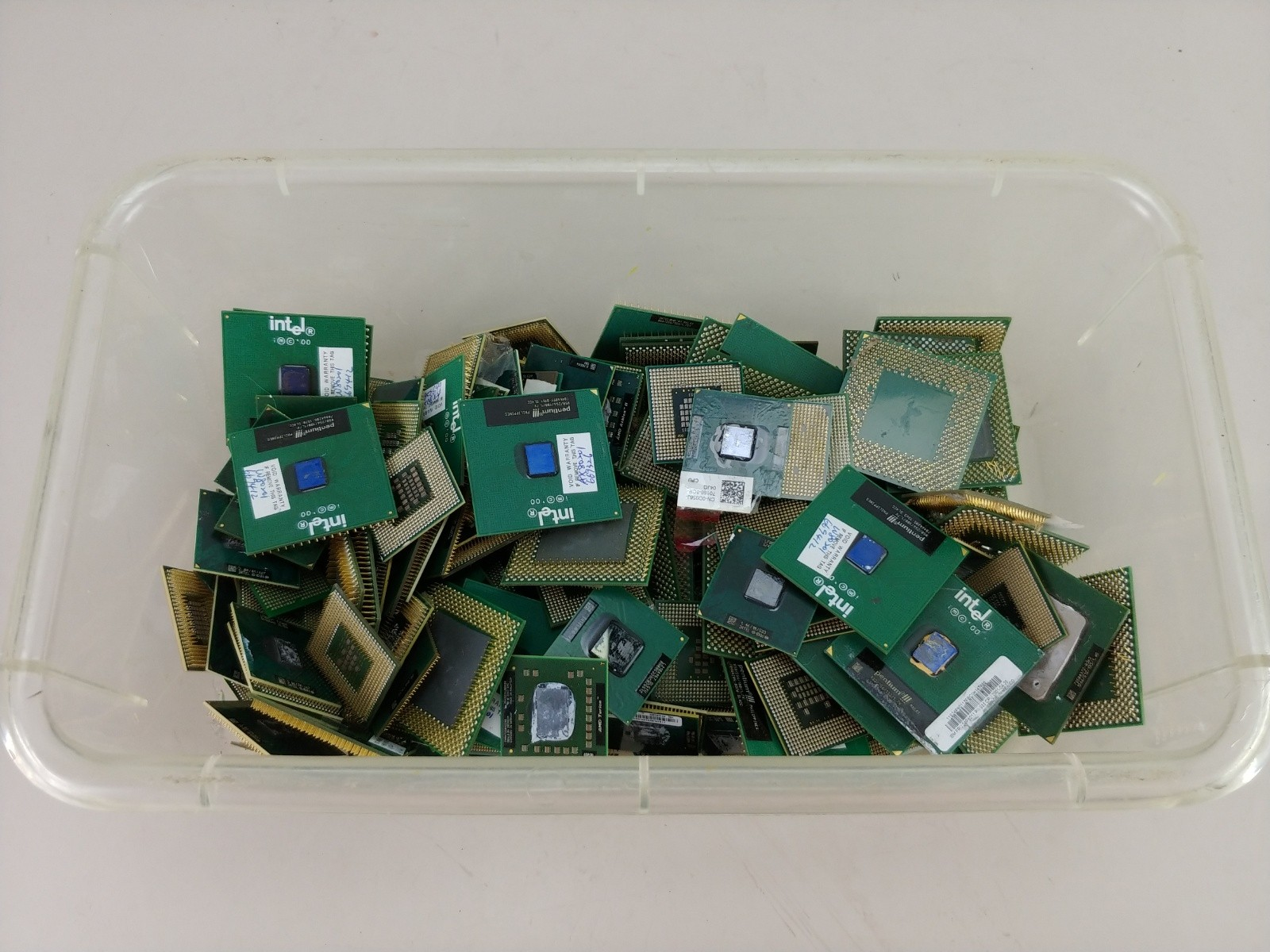 3 Pounds Fiber Gold Pin No Metal Top CPU Chips For Scrap Recovery